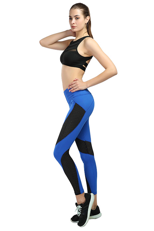 Breathable Mesh Yoga Pants - MondayBloom.com