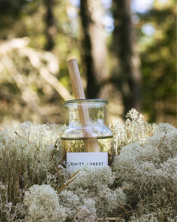White Forest (Reed Diffuser)