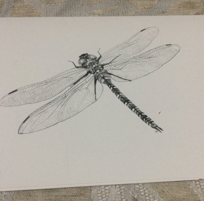 Cards - Giant Dragonfly