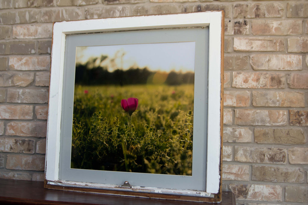 A Floral Finish--Framed