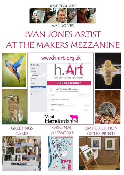 Not long now until my next exhibition as part of H-art week 2019