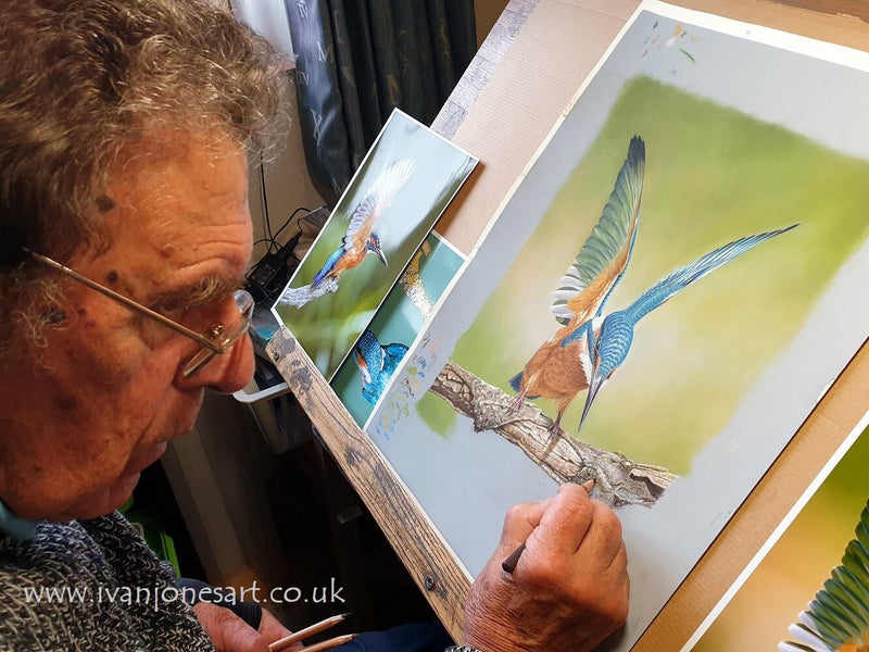 Sneak a peek at how I created this striking kingfisher artwork
