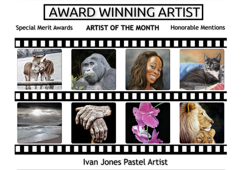 Previous awards won by Ivan Jones pastel artist