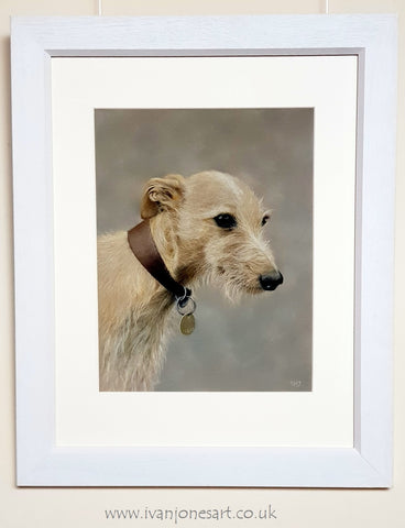 Betsy pet portrait commission framed Ivan Jones pastel artist