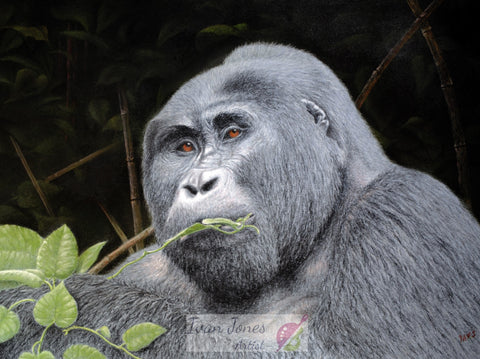 Bwindi Breakfast pastel painting Award winner Ivan Jones