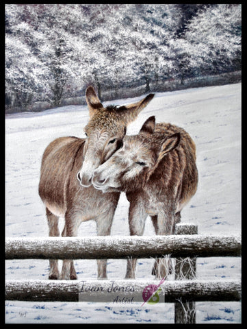 Donkeys in snow Pastel artworks Ivan Jones artist