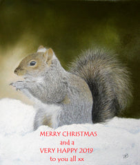 Grey squirrel in snow Merry Christmas 2018