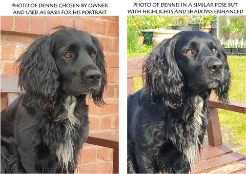 Reference photos of Dennis used for pet portrait by Ivan Jones pastel artist