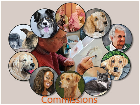 Examples of commissions by Ivan Jones pastel artist