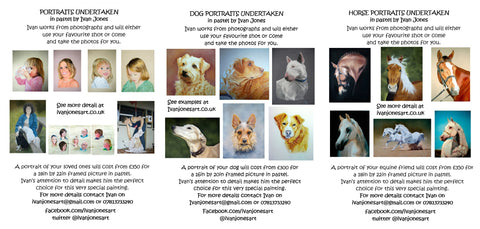 Examples and prices of commissions portraits, pet portraits, horses, Ivan Jones pastel artist