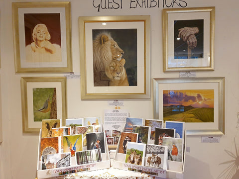 Detailed pastel artworks and card display, Ivan Jones artist, Makers Gallery, Crickhowell