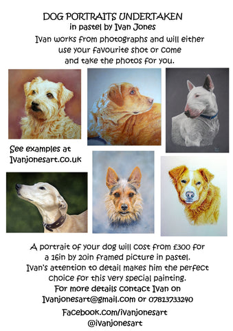 Ivan Jones pastel artist dog portrait commission poster