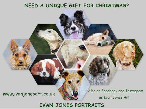 Ivan Jones pastel artist pet portrait promotion Christmas 2019