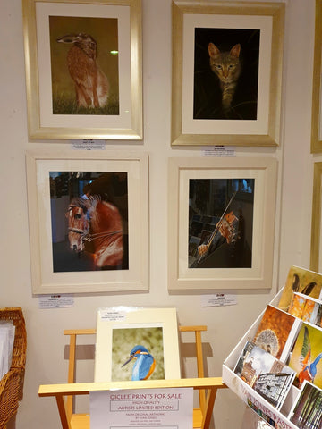 Detailed pastel paintings, Ivan Jones artist, Makers Gallery, Crickhowell