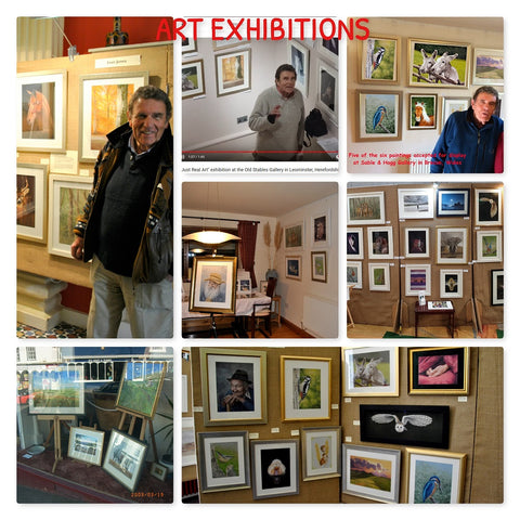 Exhibitions - many and various Ivan Jones pastel artist