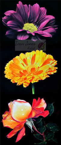 Flowers pastel artworks by Ivan Jones artist