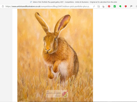 Harvest Hare Artists and Illustrators Pastel Editors Pick. Ivan Jones artist