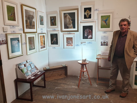 Ivan Jones artist H-art exhibition 2019