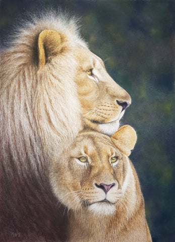 Lion and lioness lovers partners Ivan Jones pastel artist
