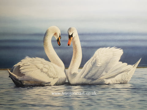 Two swans commission Ivan Jones pastel artist