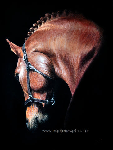 Horse pastel artwork sold Ivan Jones artist