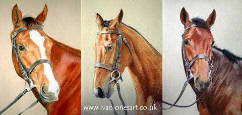 Racehorse commissions pastel artwork sold Ivan Jones artist