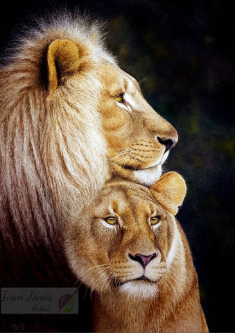 Regal Partners, lion and lioness, award winning, Ivan Jones pastel artist