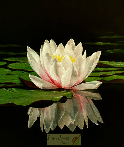 Ivan Jones Waterlily Reflections pastel painting