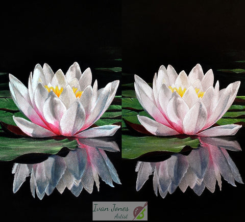 Waterlily reflections enhancements Ivan Jones pastel artist