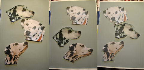 Arrangements of dalmations to chose pet portrait commission Ivan Jones pastel artist