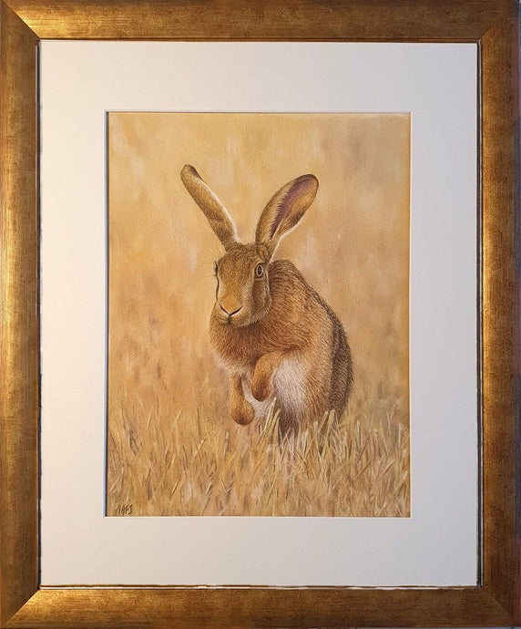 Harvest Hare. Pastel artwork in frame. Ivan Jones artist