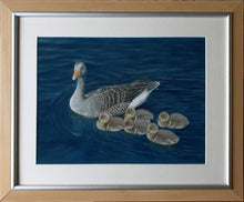Load image into Gallery viewer, Don't lag behind! Grey lag geese in frame - Ivan Jones Pastel Artist