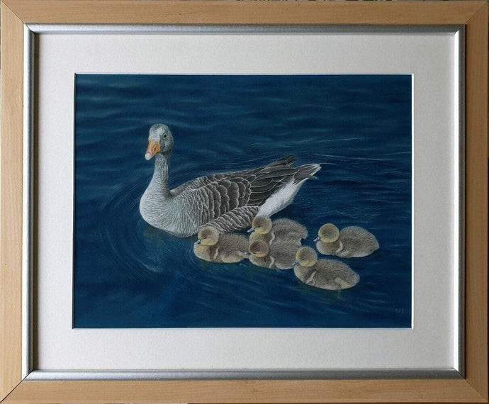 Don't lag behind! Grey lag geese in frame - Ivan Jones Pastel Artist