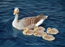 Load image into Gallery viewer, Don't lag behind! Grey lag goose and goslings  Ivan Jones Pastel Artist