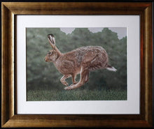 Load image into Gallery viewer, On The Run - running hare - Ivan Jones Pastel Artist