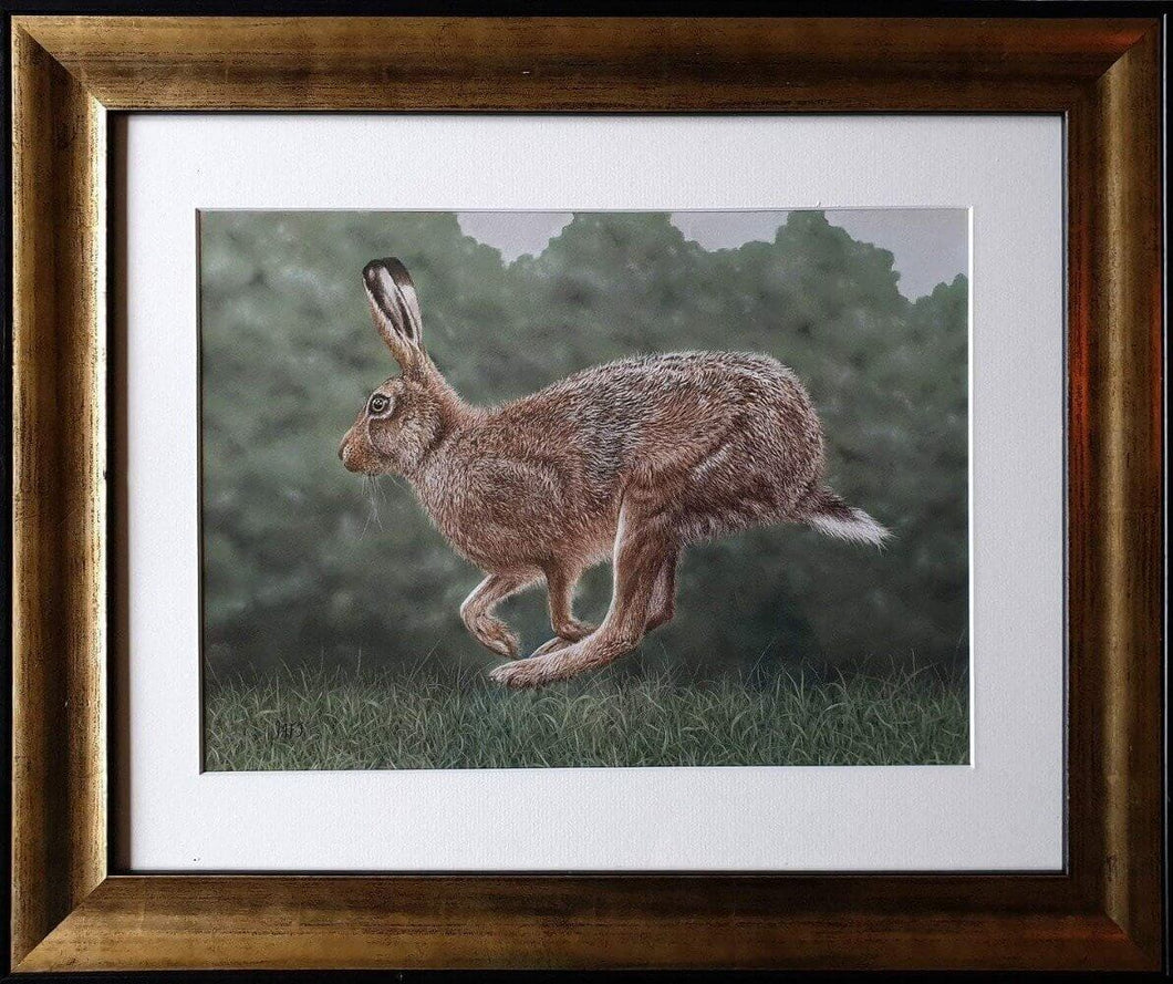 On The Run - running hare - Ivan Jones Pastel Artist