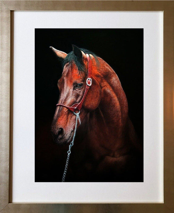 Warmblood. Bay horse Framed Ivan Jones pastel artist