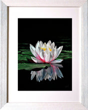 Lade das Bild in den Galerie-Viewer, Waterlily reflections in frame. Ivan Jones Pastel Artist