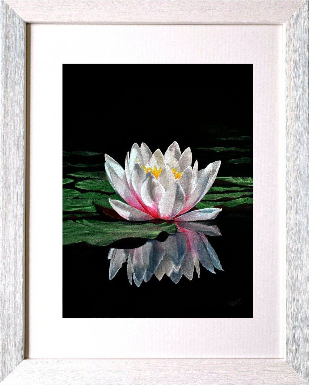 Waterlily reflections in frame. Ivan Jones Pastel Artist