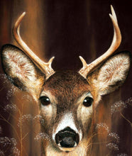 Charger l'image dans la galerie, Can you see me? Whitetail deer Detail of head Ivan Jones Pastel Artist