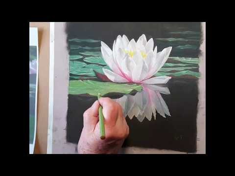 Ivan adding finishing touches to Waterlily reflection pastel artwork for sale