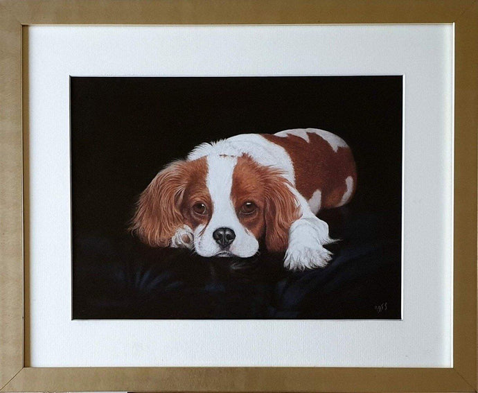 Ready to go - Cavalier King Charles Spaniel - Ivan Jones Pastel Artist