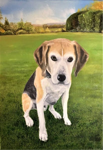 "Pet Portrait Hand Painted Original Oil Painting of your Dog on 16"" x 20"" Canvas - from your photo Beagle"