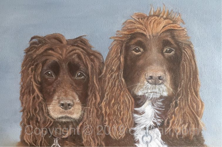 Pet Portrait Original Oil Painting on Canvas of your dog - Spaniel