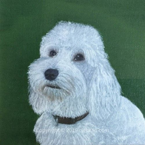Pet Portrait Testimonial Recommendation