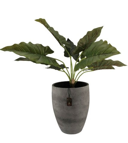 Adelaide Cement Light  Pot High B  Antraciet 27x33