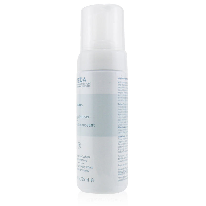 Outer Peace Foaming Cleanser 105922