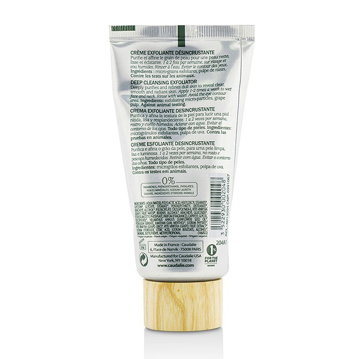 Deep Cleansing Exfoliator 213901