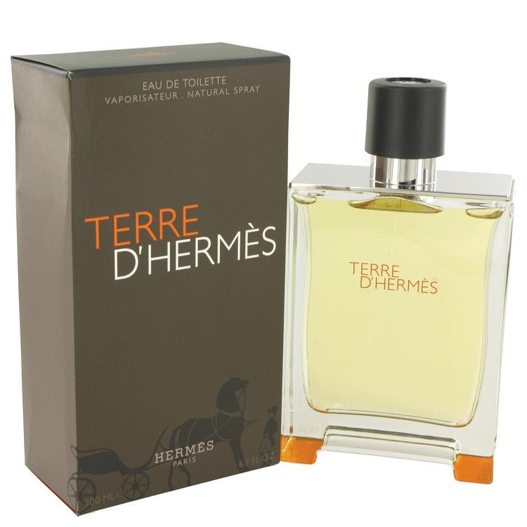 Load image into Gallery viewer, Terre D'hermes Eau De Toilette Spray By Hermes 482920