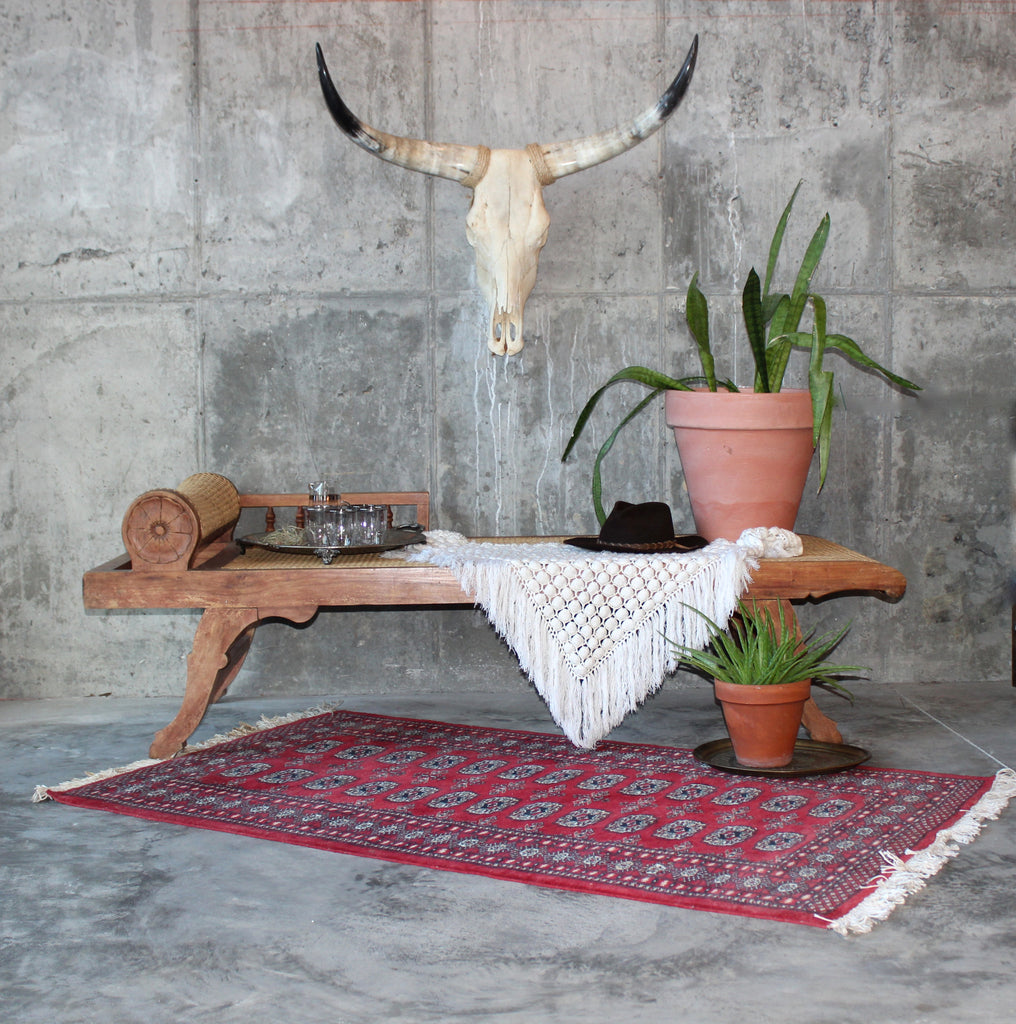 Cowskull - boho decor